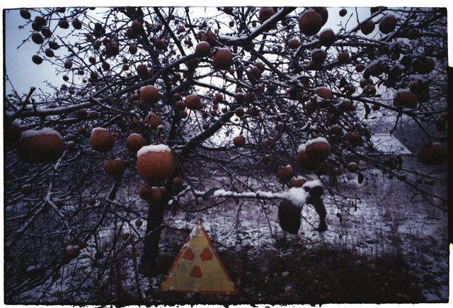 cernobil_1986_amintiri_care_dor.jpg